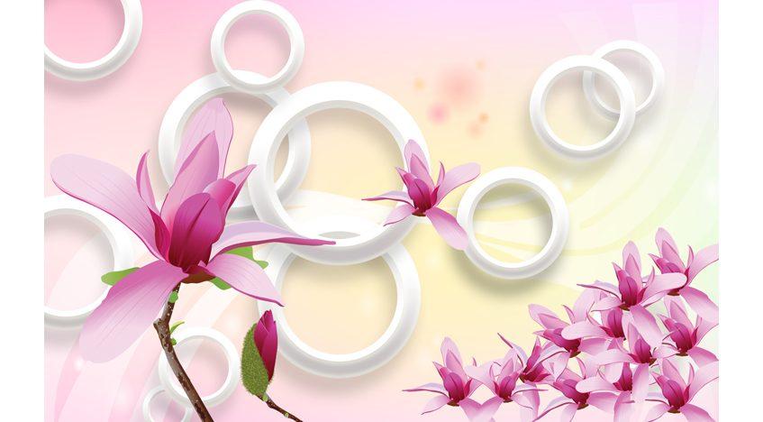 Фотообои 3D Круги и розовая магнолия