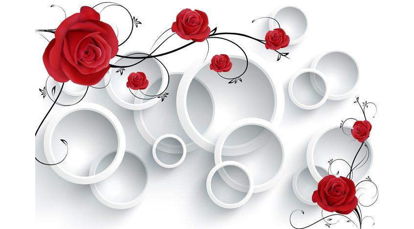 Фотообои 3D Белые кольца и красные розы