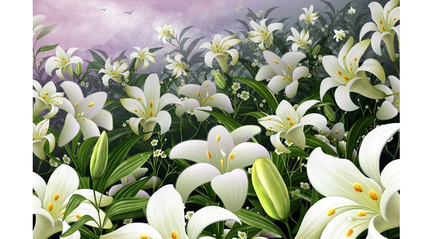 Фотообои 3D Поле с лилиями