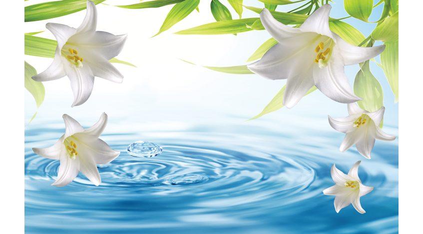 Фотообои 3D Лилии над водой