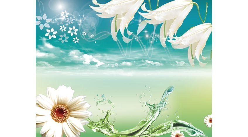 Фотообои 3D Лилии и ромашки