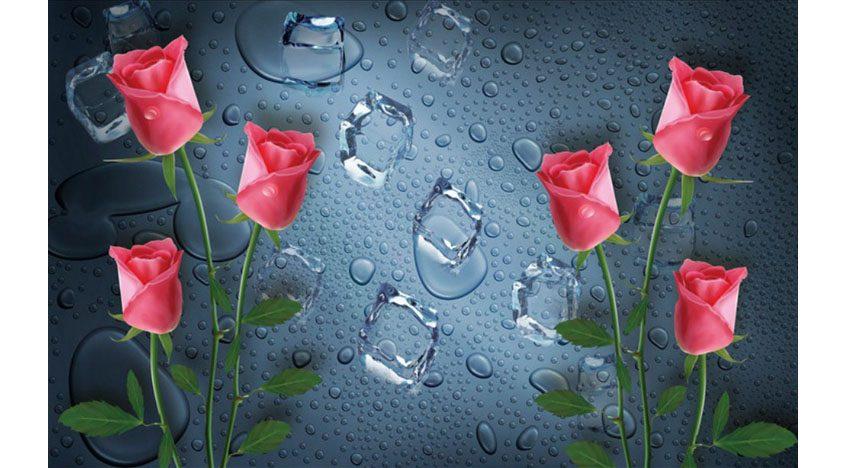 Фотообои 3D Розы на фоне капелек воды