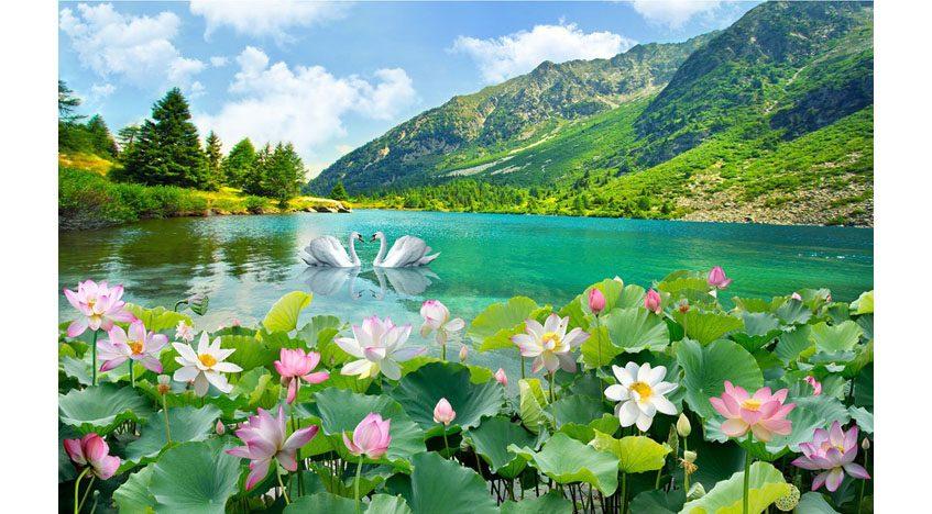 Фотообои 3D Озеро с лотусами