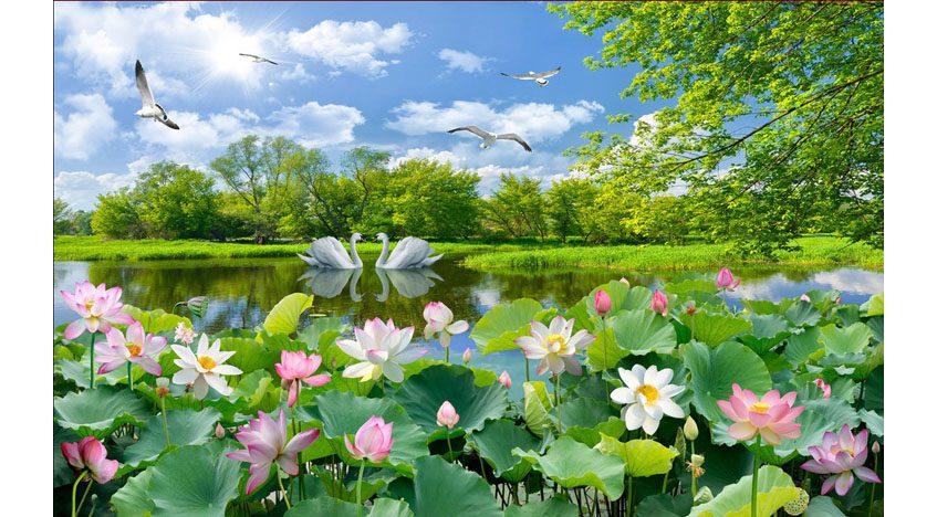 Фотообои 3D Озеро с лотусами летом