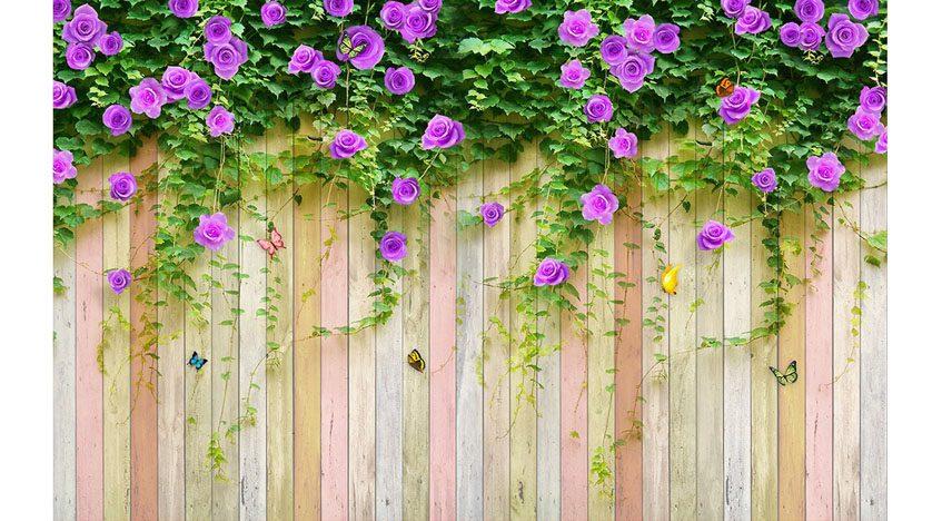 Фотообои 3D Фиолетовые цветы на заборе