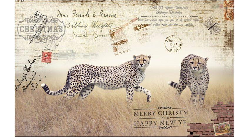 Фотообои 3D Открытка с леопардами