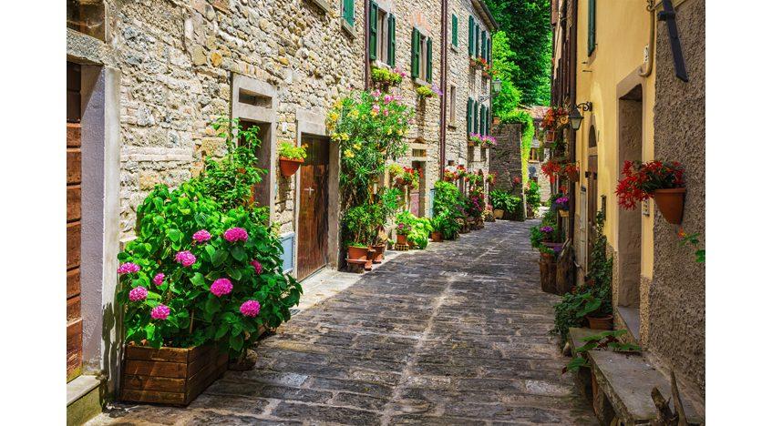 Фотообои Улочка старого города в цветах